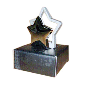 Star shaped NameCard Holder